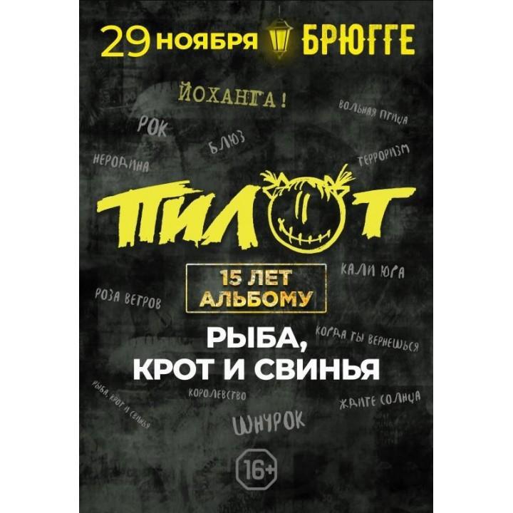 ПилОт в Минске (фирменный билет)