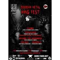 Doodah Metal King Fest 15 января 2020 Бар «Doodah King» Минск (фирменный билет)