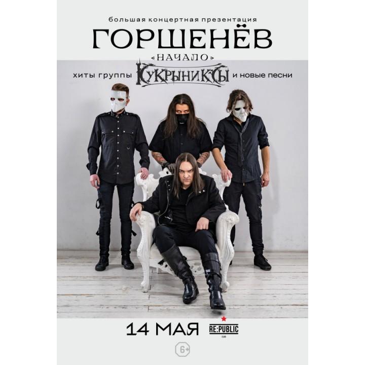 Горшенев в Минске (фирменный билет)