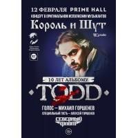 10 лет альбому TODD 12 февраля 2022 «Prime Hall» Минск (фирменный билет)