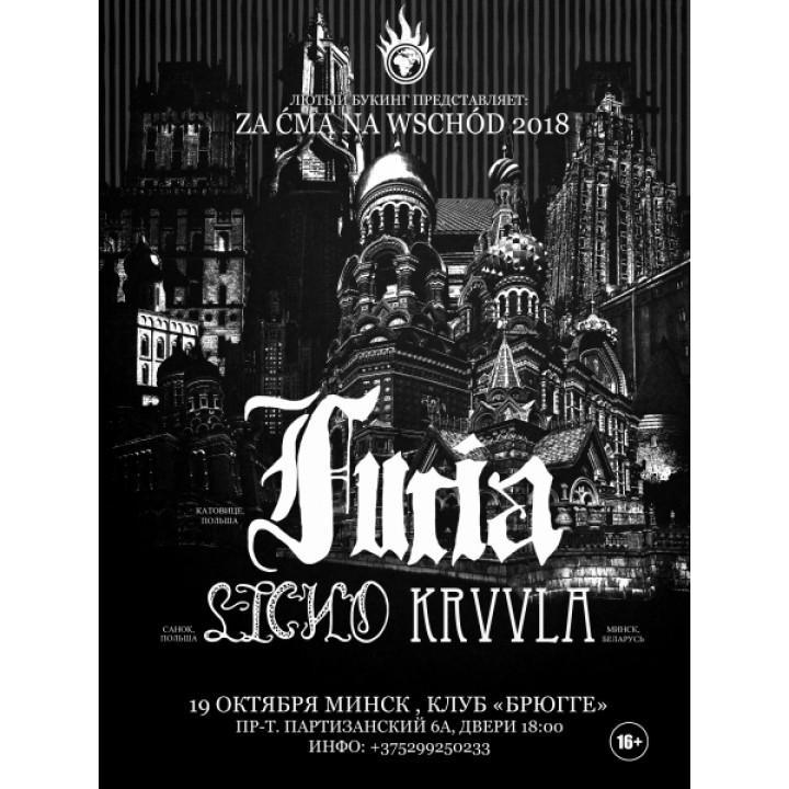 Furia в Минске (фирменный билет)