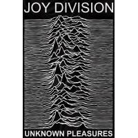 "Флаг ""Joy Division"""