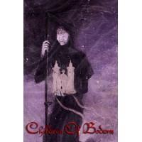 """Флаг """"Children Of Bodom"""""""