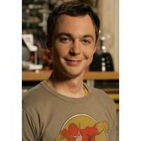 """Постер """"The Big Bang Theory (Теория большого взрыва)"""""""