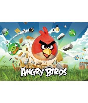 """Постер """"Angry Birds"""""""