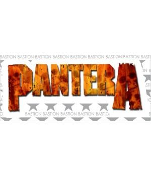 """Виниловая наклейка """"Pantera"""""""