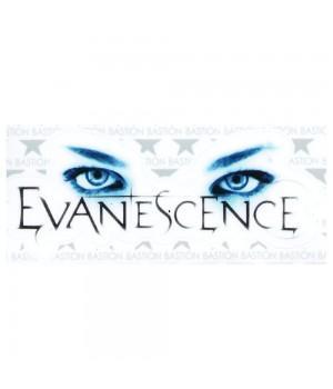 """Виниловая наклейка """"Evanescence"""""""