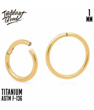 "Кольцо-кликер Gold ""Implant Grade"" 1.0 мм титан + PVD"