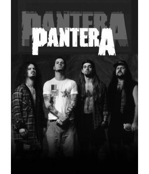 """Постер """"Pantera"""""""