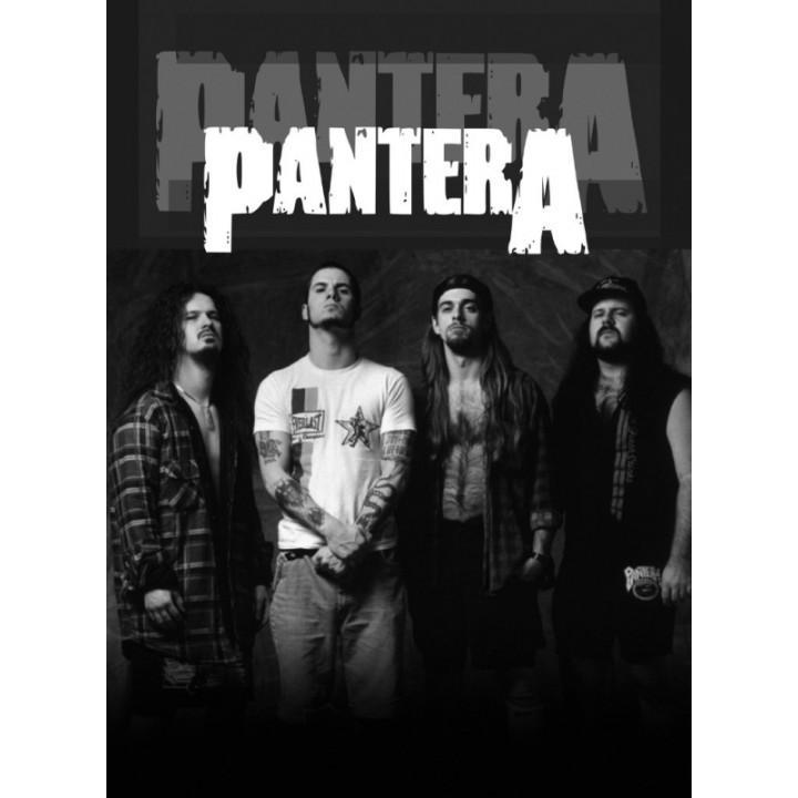 """Постер """"Pantera"""" (1381)"""